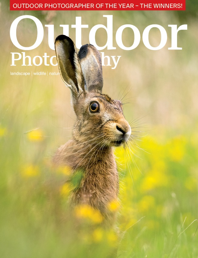 OP's April issue...what's in store