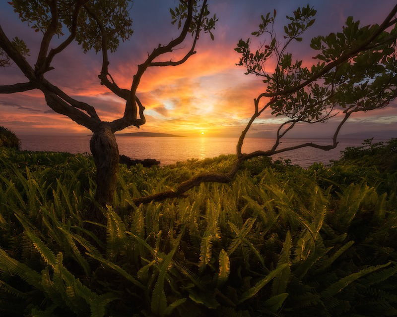 USA Landscape Photographer of the Year 2015